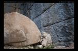Arykanda - Antikes neu belichtet - Fotoreise Lykien, Türkei